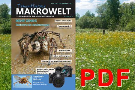Traumflieger Makrowelt Ausgabe Nr.6 PDF - Traumflieger.de