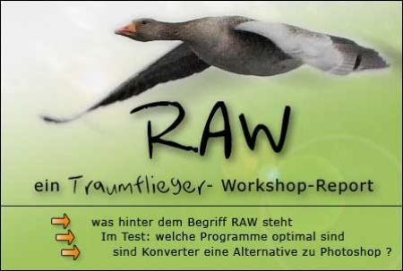 Tutorial: mit RAW's und der optimalen Konverter-Software arbeite
