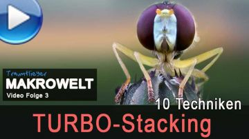 so funktioniert Turbo-Stacking (Makrowelt Video Nr. 3)