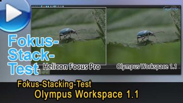 Olympus Workspace 1.1 - Fokustacking