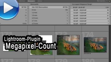 Lightroom-Plugin: Jeffrey's Megapixel-Sort vorgestellt!