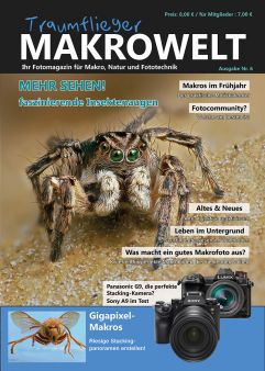 Traumflieger MAKROWELT - Edition Nr. 6