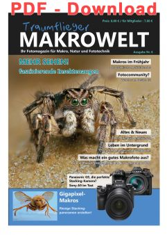Traumflieger Makrowelt Edition Nr. 6 - PDF Download