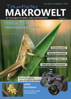 Traumflieger MAKROWELT - edition Nr. 7