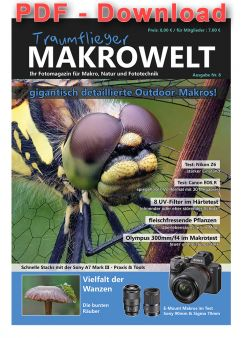Traumflieger MAKROWELT - edition nr. 8 - PDF Download