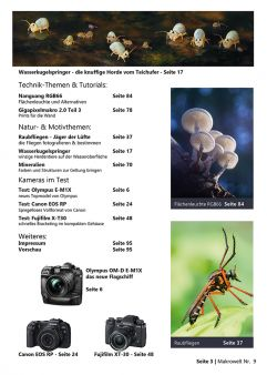 Traumflieger MAKROWELT - edition Nr. 9 - PDF download