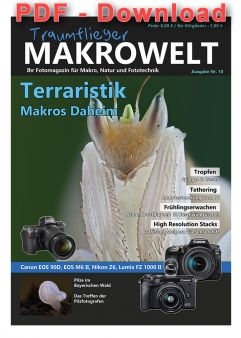 Traumflieger MAKROWELT - edition Nr. 10 - pdf download