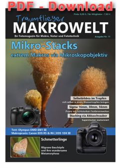 Traumflieger Makrowelt - edition 11 - PDF download