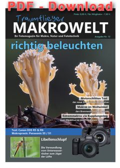Traumflieger Makrowelt - edition 12 - PDF download